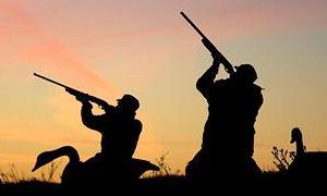 Сроки открытия весенней охоты (2016)