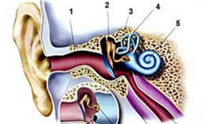 Как избавить уши от боли (подробное руководство)