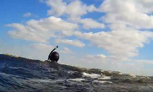 Юрий Коваленко: Щука 7,5 + амур 16 кг (подводная охота)