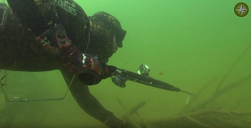 стройного подводная охота в десногорске любимый аромат