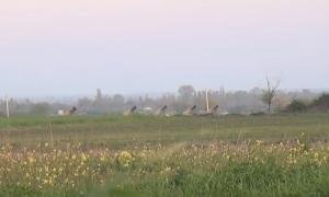 В зоне конфликта в Нагорном Карабахе.