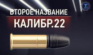 Гражданское оружие: Мелкий калибр