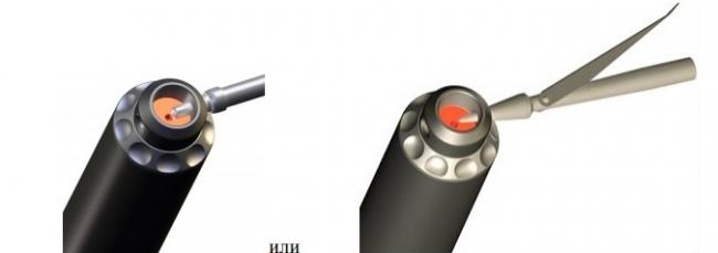 Вставить в поперечное отверстие задника хвостовик гарпуна или острие