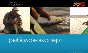 Видео: Ловля жереха на нижней Волге