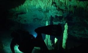 Павел Збарах: Cenote Dreamgate (Ворота мечты)