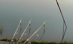 Андрей Слепнёв: Рыбалка на карася. Карась на донку.
