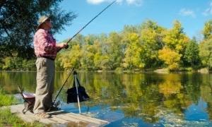 Конопля как прикормка для рыбалки