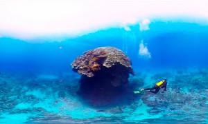 Дайвинг-йога, подводные сокровища и дверь для гидрофобов