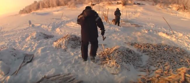 (Загар рыбы) - Зимняя промысловая рыбалка на Севере.