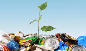 Пластмассовый мусор и как с ним бороться