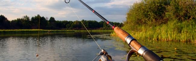 Рыбалка в Железнодорожном (Балашиха)