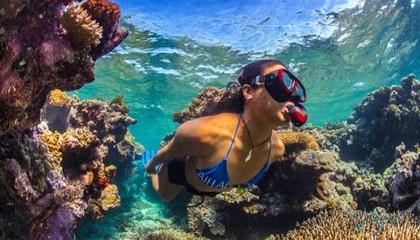Большой Барьерный риф (ББР)