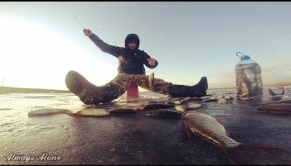 Always Alone: Первая рыбалка 2017 года