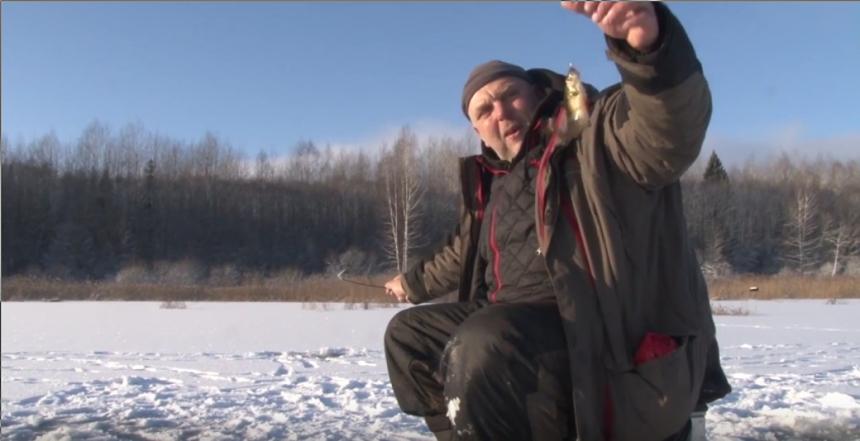 Окунь зимой на мелководье