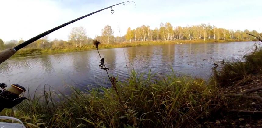 Отдыхающая поездка в деревню, рыбалка, испытание едой