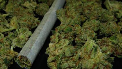 Легализации наркотиков в России