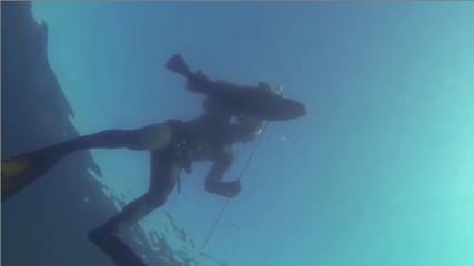 SpearfishingEE: Подводная охота в Норвегии с Геннадием Коваленко (Треска)