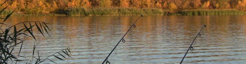 Рыбалка по высокой воде на нижней Волге