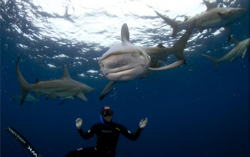 Подводная охота с Pierre Frolla (Пьер Фролла)