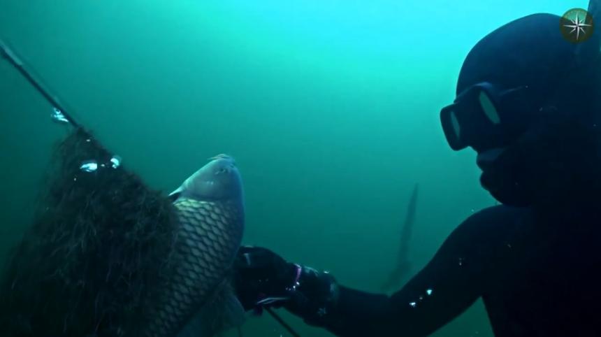 Шкиль Игорь: КОМПАС №36 (Подводная охота)