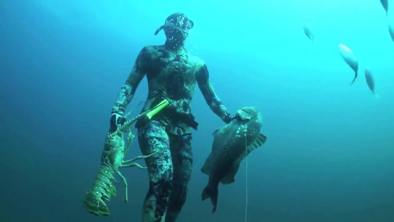 Подводная охота Палм-Бич, Флорида США