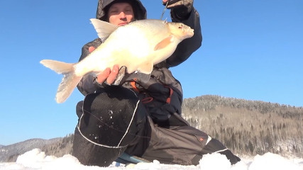 Sibiria Рыбалка и Охота:  Экстремальная рыбалка в -35 на безмотылку