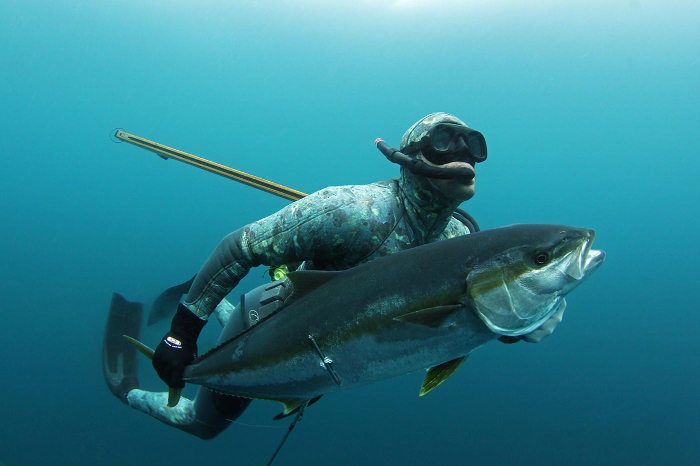 ЛУЧШИЕ МОМЕНТЫ (Подводная охота)