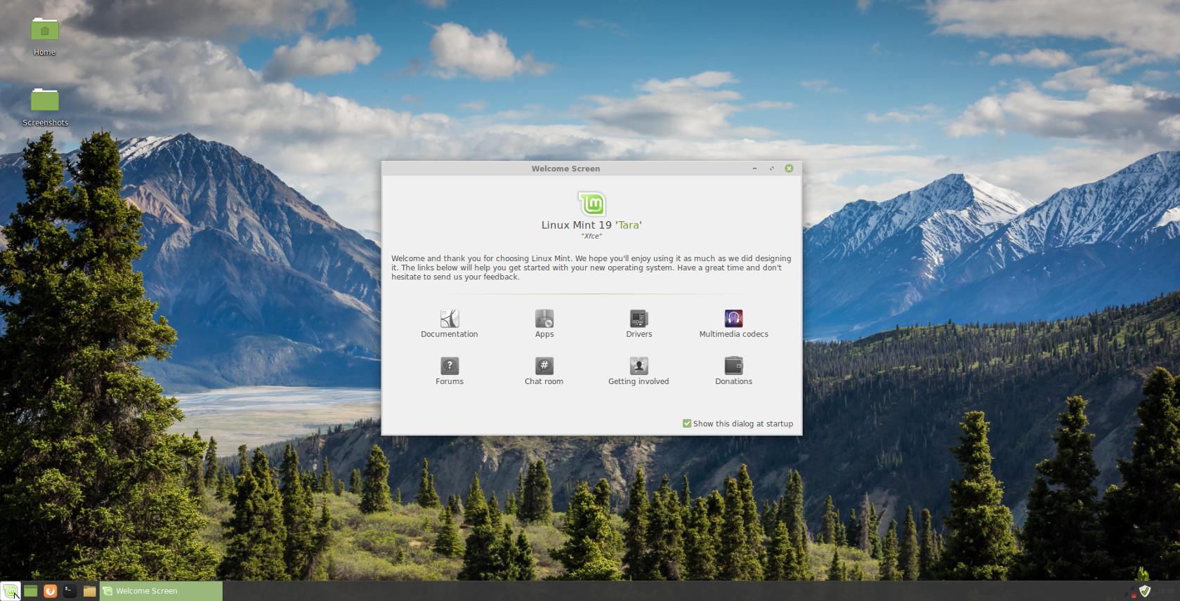 Linux mint 19 (скачать и обновится)