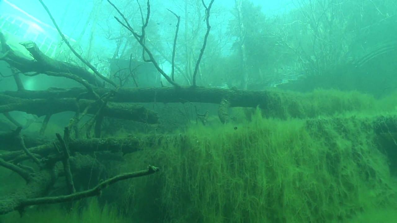 Озеро Церик-Кёль (тайна без дна)
