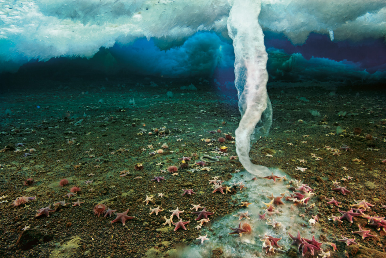 Палец смерти в океане