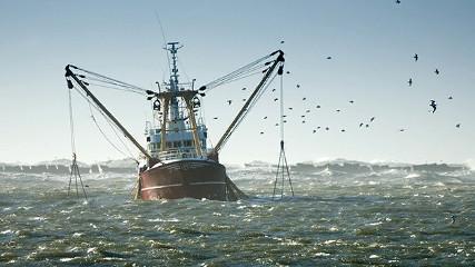 Рыбалка в 2019 году (Прибрежка)