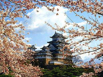 Интересные факты о Японии. Традиции, менталитет.