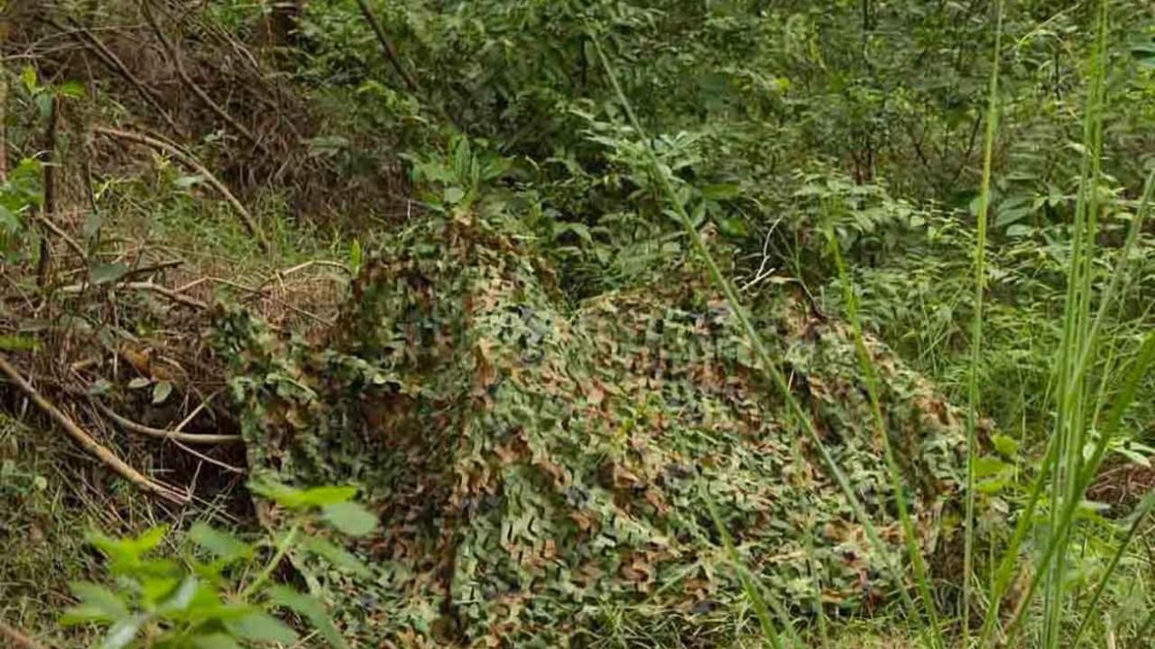 Маскировочные сети для охоты