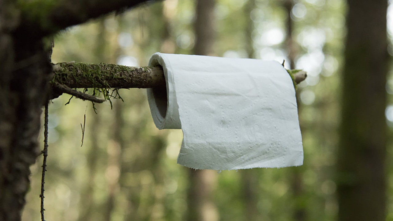 Что необходимо взять с собой на природу